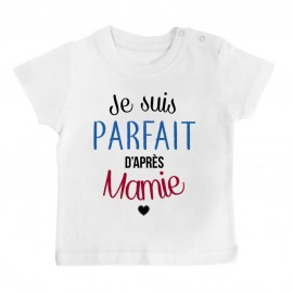 T-Shirt bébé Je suis parfait d'après mamie