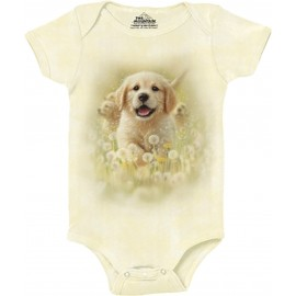 Body chiot golden - The...